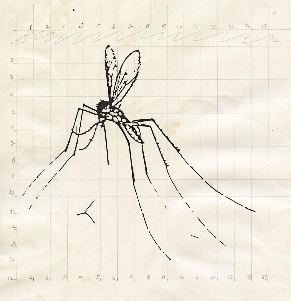 mosquito_desenho_01_arquivo